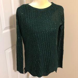 Apt. 9 Dark Green Sparkle Lined Tunic Sweater NWT